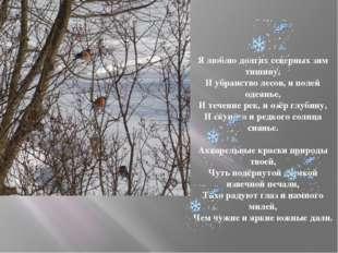 Я люблю долгих северных зим тишину, И убранство лесов, и полей одеянье, И теч