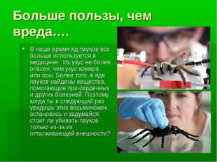 Больше пользы, чем вреда…. В наше время яд пауков все больше используется в м
