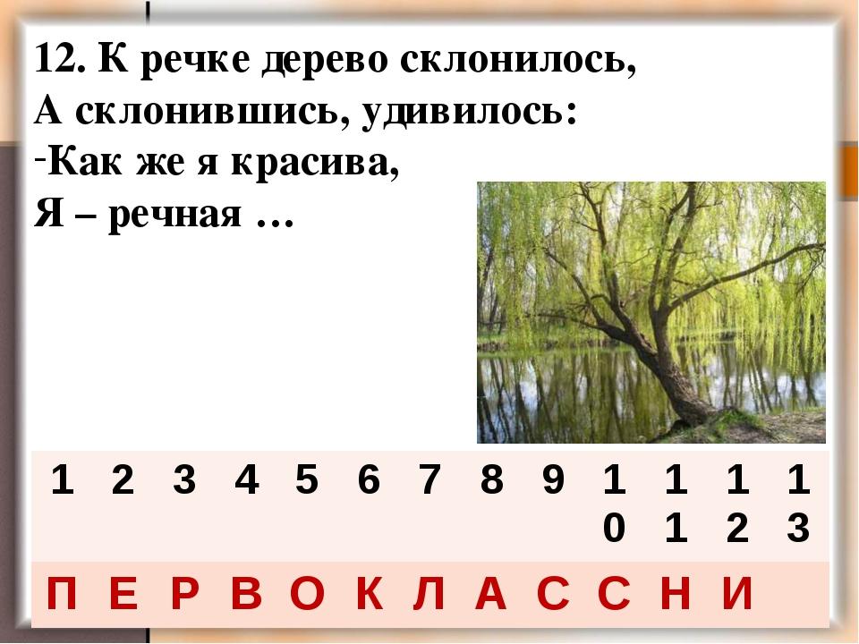 12. К речке дерево склонилось, А склонившись, удивилось: Как же я красива, Я...