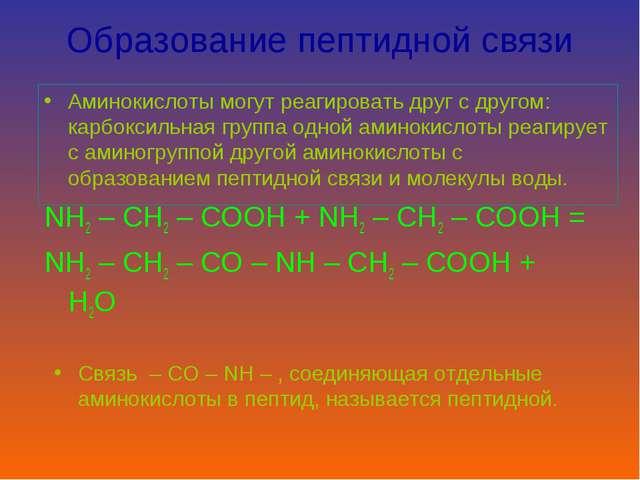 Образование пептидной связи Аминокислоты могут реагировать друг с другом: кар...