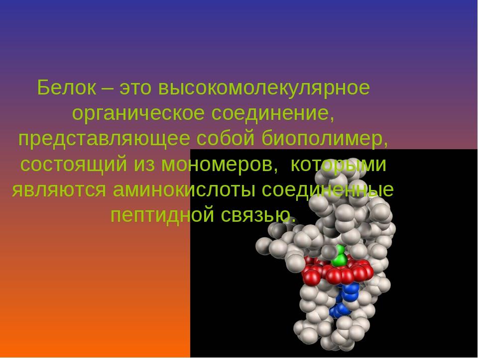 Белок – это высокомолекулярное органическое соединение, представляющее собой...