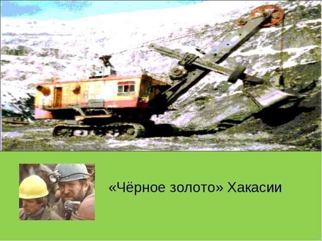«Чёрное золото» Хакасии