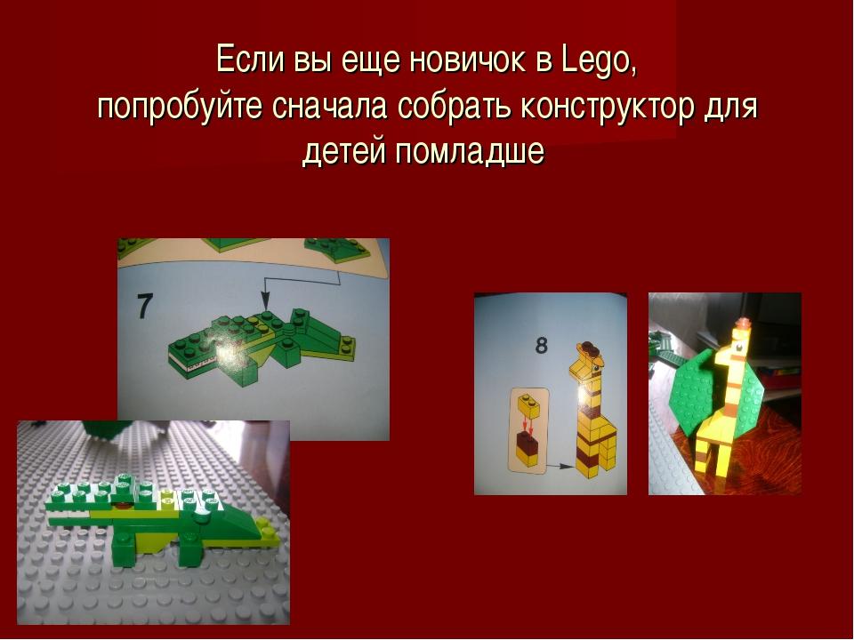 Если вы еще новичок в Lego, попробуйте сначала собрать конструктор для детей...