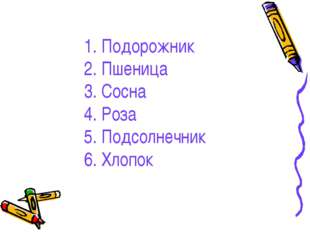 1. Подорожник 2. Пшеница 3. Сосна 4. Роза 5. Подсолнечник 6. Хлопок