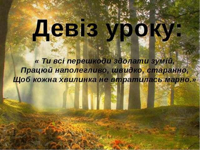 Девіз уроку: « Ти всі перешкоди здолати зумій, Працюй наполегливо, швидко, ст...