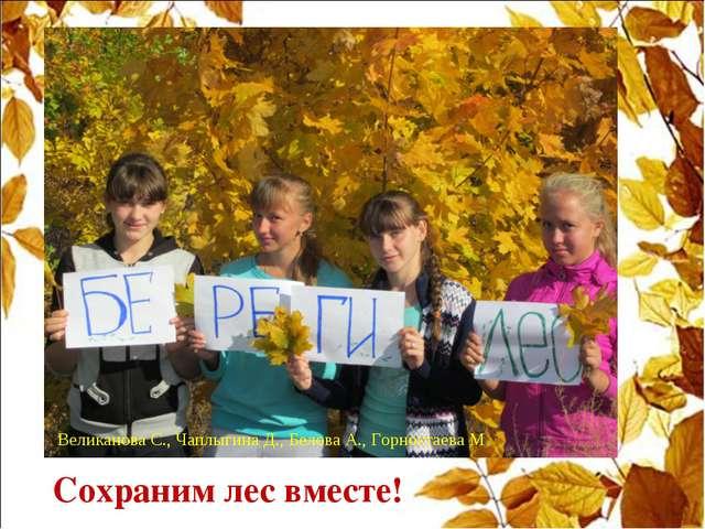 Сохраним лес вместе! Великанова С., Чаплыгина Д., Белова А., Горностаева М