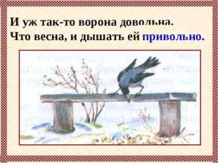 И уж так-то ворона довольна, Что весна, и дышать ей … привольно.