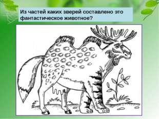 Из частей каких зверей составлено это фантастическое животное?
