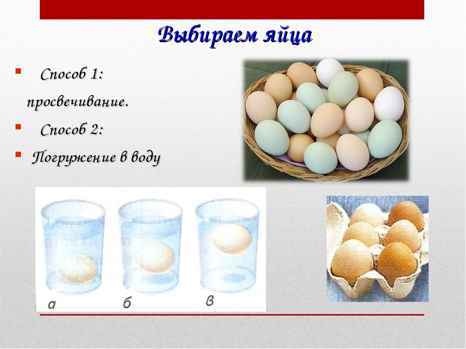 Выбираем яйца Способ 1: просвечивание. Способ 2: Погружение в воду