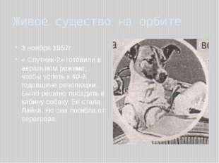 Живое существо на орбите 3 ноября 1957г. « Спутник-2» готовили в авральном ре