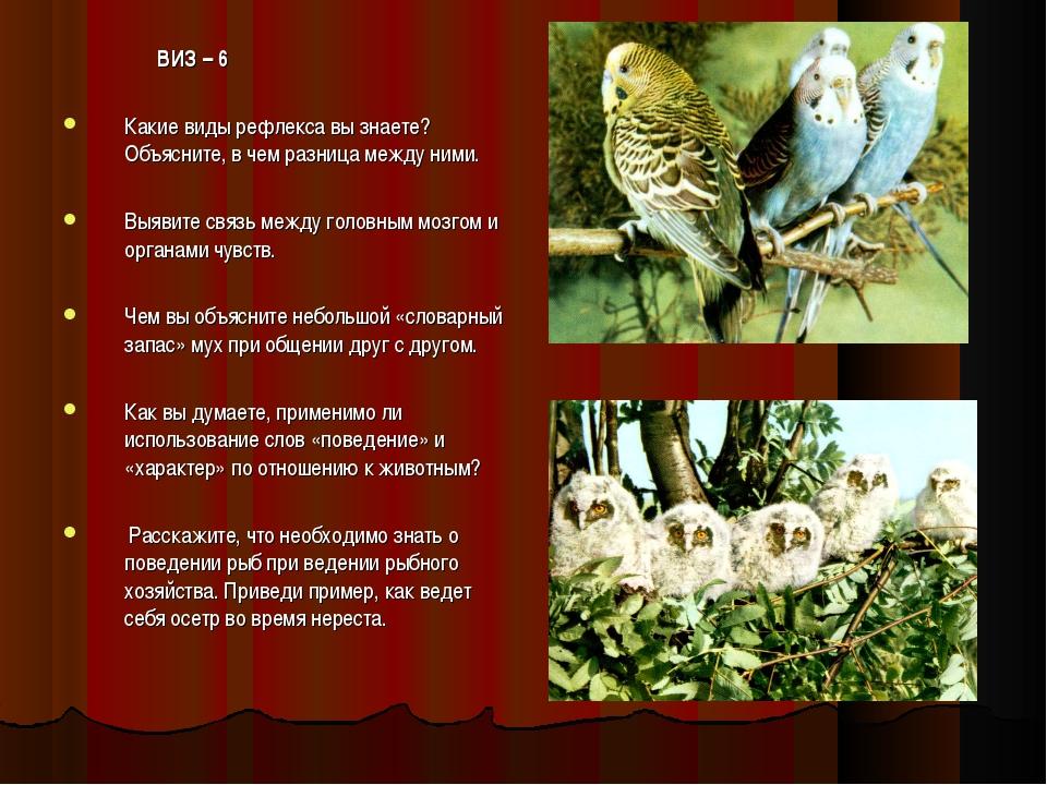 ВИЗ – 6 Какие виды рефлекса вы знаете? Объясните, в чем разница между ними....