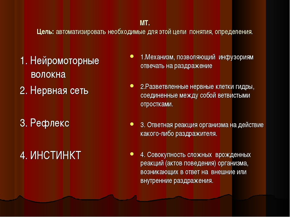 МТ. Цель: автоматизировать необходимые для этой цели понятия, определения. 1....