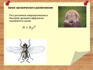 Закон органического размножения Рост различных микроорганизмов и бактерий, д