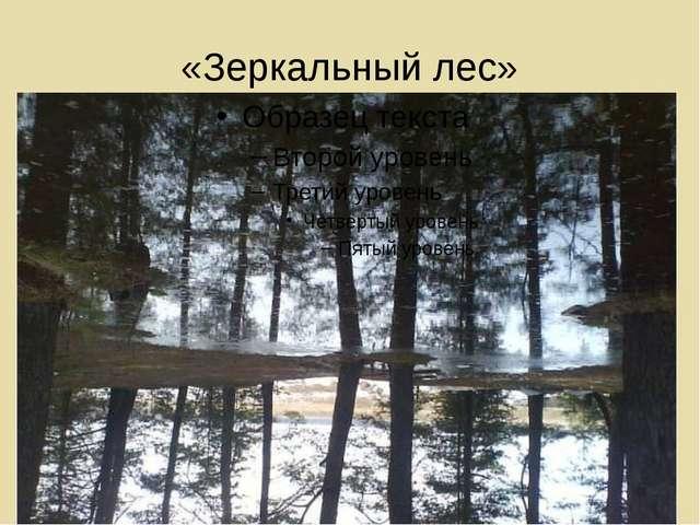 «Зеркальный лес»