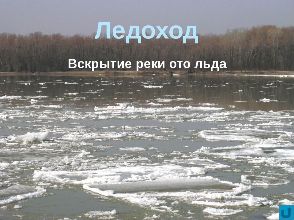 Речная долина Вытянутое углубление на земной поверхности, выработанное постоя...