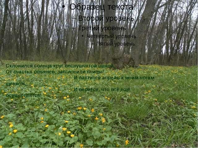 Склонился солнца круг веснушчатой щекой, От счастья опьянев, заголосили птиц...