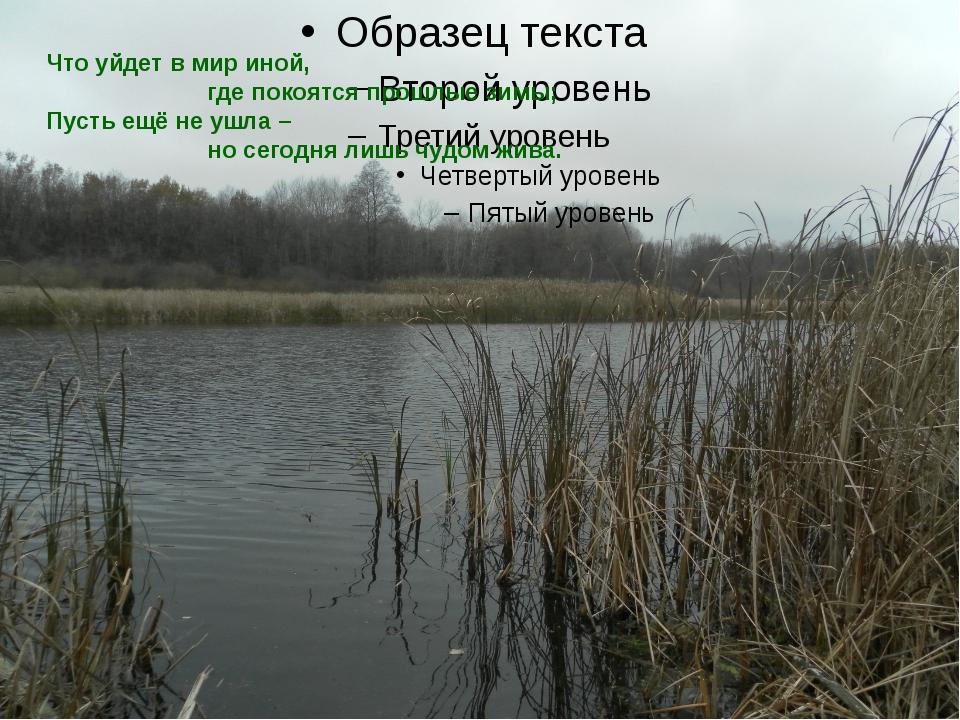Что уйдет в мир иной,   где покоятся прошлые зимы; Пус...