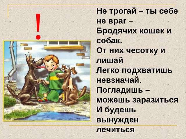 ! Не трогай – ты себе не враг – Бродячих кошек и собак. От них чесотку и лиша...