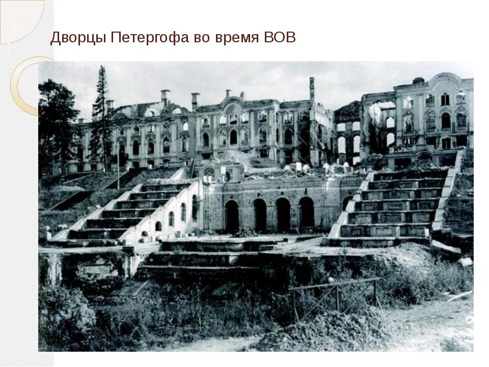 Дворцы Петергофа во время ВОВ