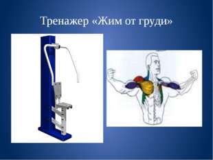 Тренажер «Жим от груди»
