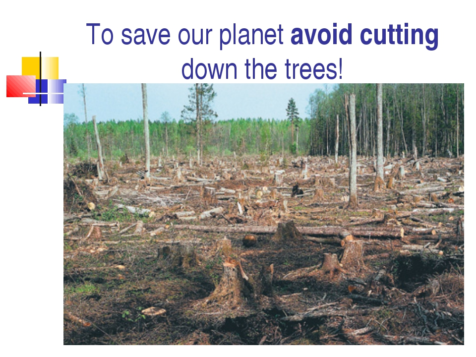 To save our planet avoid cutting down the trees!