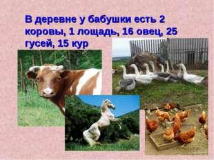 В деревне у бабушки есть 2 коровы, 1 лощадь, 16 овец, 25 гусей, 15 кур
