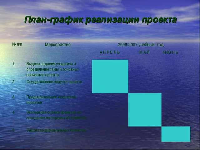 План-график реализации проекта