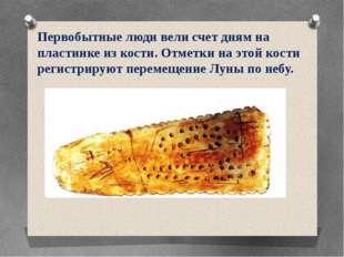 Первобытные люди вели счет дням на пластинке из кости. Отметки на этой кости