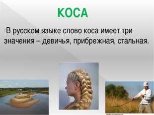 В русском языке слово коса имеет три значения – девичья, прибрежная, стальна