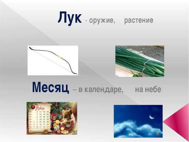 Лук - оружие, растение Месяц – в календаре, на небе