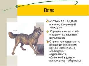 Волк «Лютый», т.е. Защитник племени, пожирающий злых духов Сородичи называли