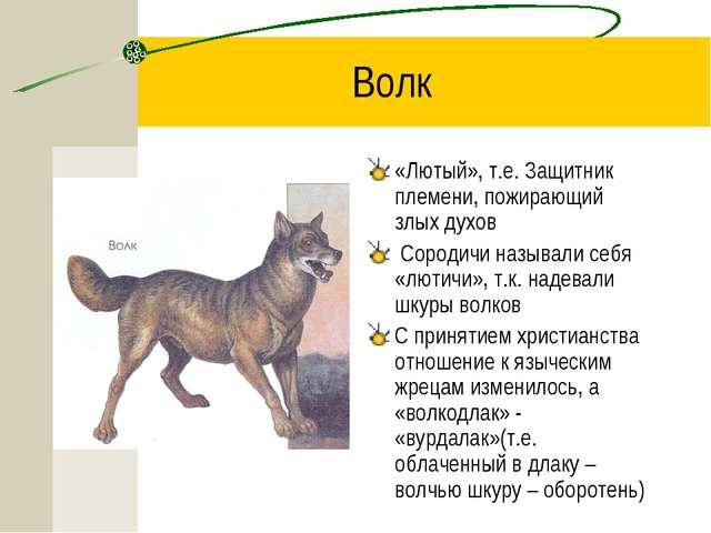 Волк «Лютый», т.е. Защитник племени, пожирающий злых духов Сородичи называли...