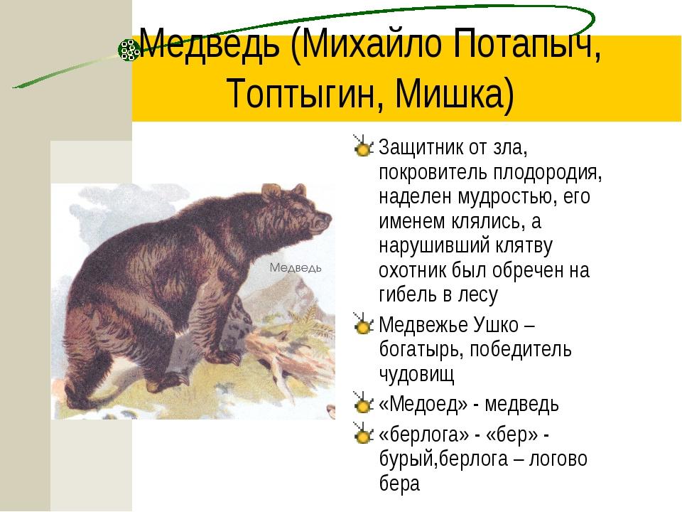Медведь (Михайло Потапыч, Топтыгин, Мишка) Защитник от зла, покровитель плодо...
