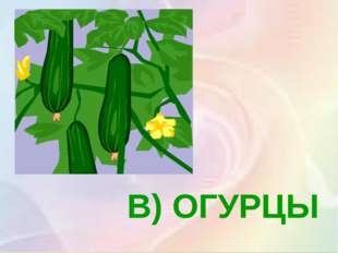 В) ОГУРЦЫ