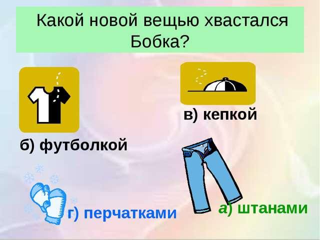 Какой новой вещью хвастался Бобка? а)штанами б) футболкой в) кепкой г) перч...