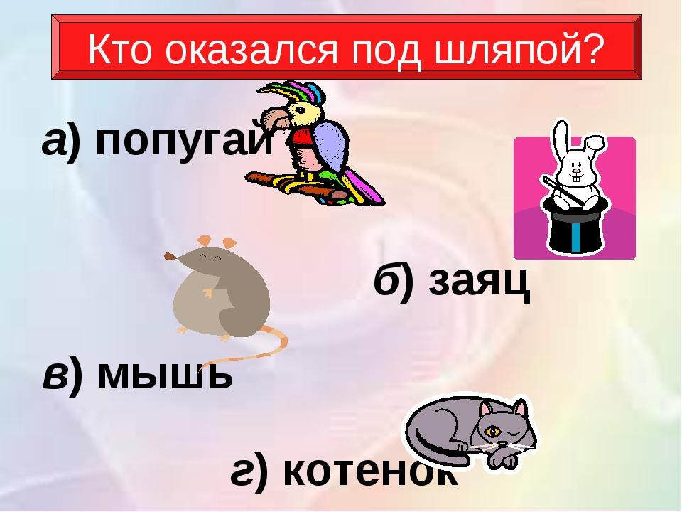 Кто оказался под шляпой? а)попугай б)заяц в)мышь г)котенок