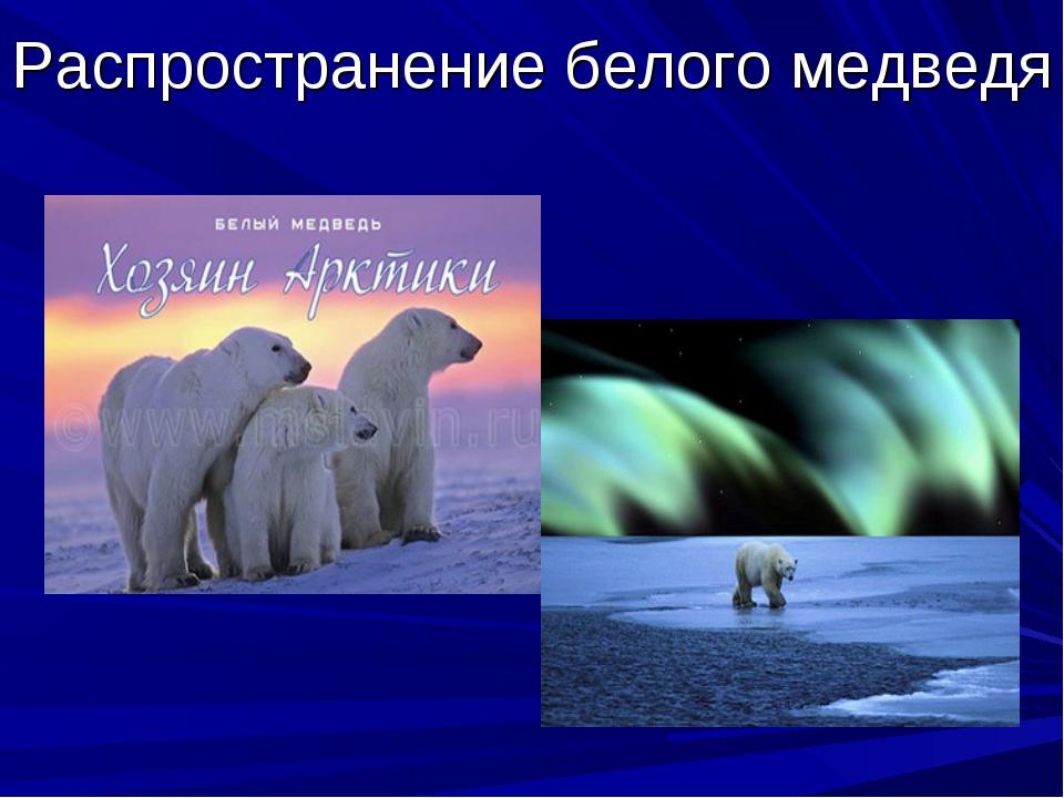 Распространение белого медведя
