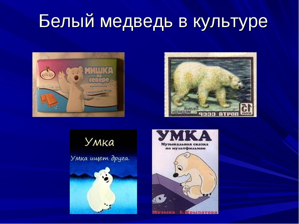 Белый медведь в культуре