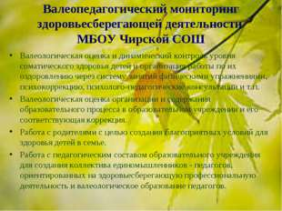 Валеопедагогический мониторинг здоровьесберегающей деятельности МБОУ Чирской
