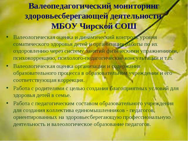 Валеопедагогический мониторинг здоровьесберегающей деятельности МБОУ Чирской...
