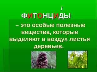 ФИТОНЦИДЫ – это особые полезные вещества, которые выделяют в воздух листья де