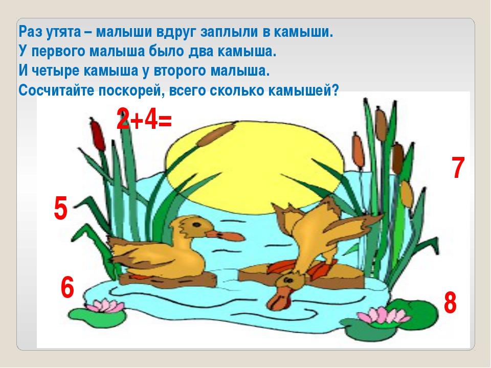 Раз утята – малыши вдруг заплыли в камыши. У первого малыша было два камыша....