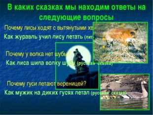 В каких сказках мы находим ответы на следующие вопросы Почему лисы ходят с вы
