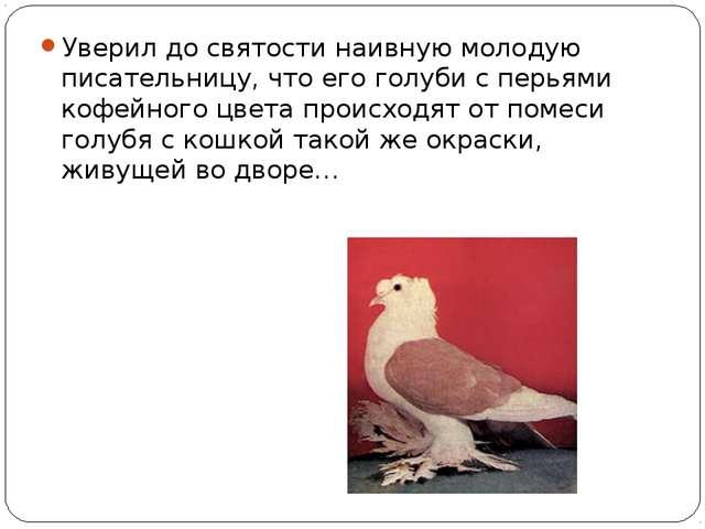 Уверил до святости наивную молодую писательницу, что его голуби с перьями коф...