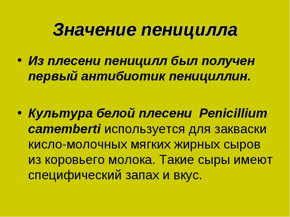 Значение пеницилла Из плесени пеницилл был получен первый антибиотик пеницилл...