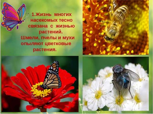 1.Жизнь многих насекомых тесно связана с жизнью растений. Шмели, пчелы и мухи...