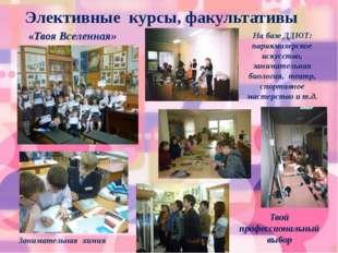 Элективные курсы, факультативы На базе ДДЮТ: парикмахерское искусство, заним