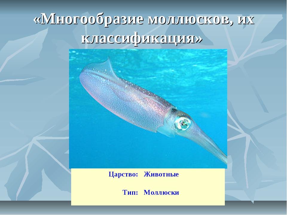 «Многообразие моллюсков, их классификация» Царство:Животные Тип:Моллюски