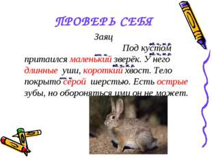 ПРОВЕРЬ СЕБЯ Заяц Под кустом притаился маленький зверёк. У него длинные уши,