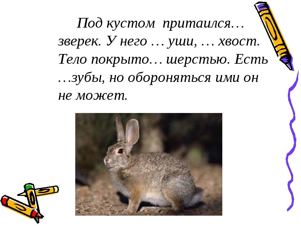 Под кустом притаился… зверек. У него … уши, … хвост. Тело покрыто… шерстью....